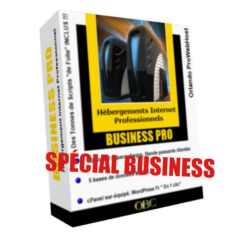 HÉBERGEMENT WEB BUSINESS PRO : MENSUEL